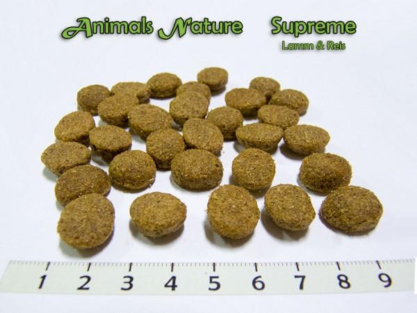 Supreme Lamm & Reis