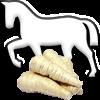 Pferd & Pastinake