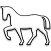 Pferd pur